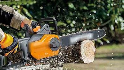 Sri Lanka đóng cửa các nhà máy gỗ để bảo vệ rừng