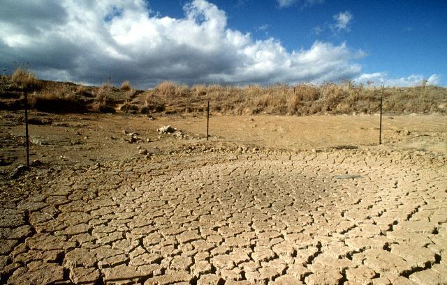 Việt Nam có 1,3 triệu ha đất bị suy thoái