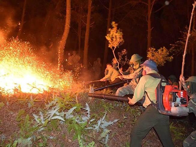 Hà Tĩnh bắt đầu mưa, cháy rừng cơ bản được khống chế