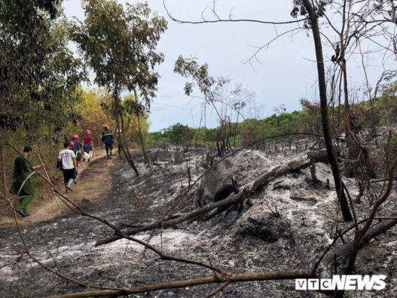 Rừng ở Quảng Ngãi cháy liên tục suốt 24 tiếng đồng hồ ...