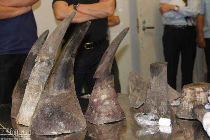 Cục Điều tra chống buôn lậu: Bắt giữ hàng tấn ngà voi, vảy tê tê, ma túy
