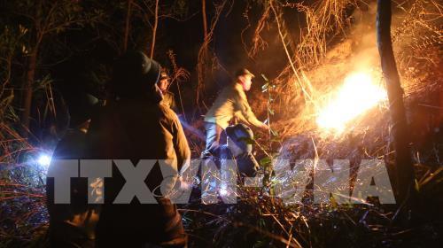 Cơ bản khống chế vụ cháy rừng bùng phát ở núi Nầm, Hà Tĩnh