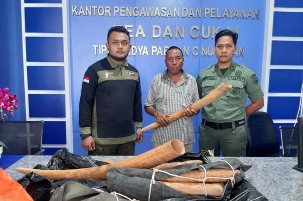 Indonesia tịch thu 10 ngà voi nhập lậu