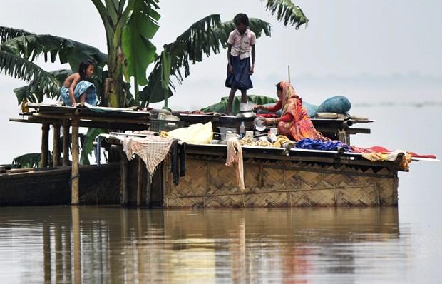 Lũ lụt gây ra thiệt hại lớn tại Ấn Độ và Bangladesh