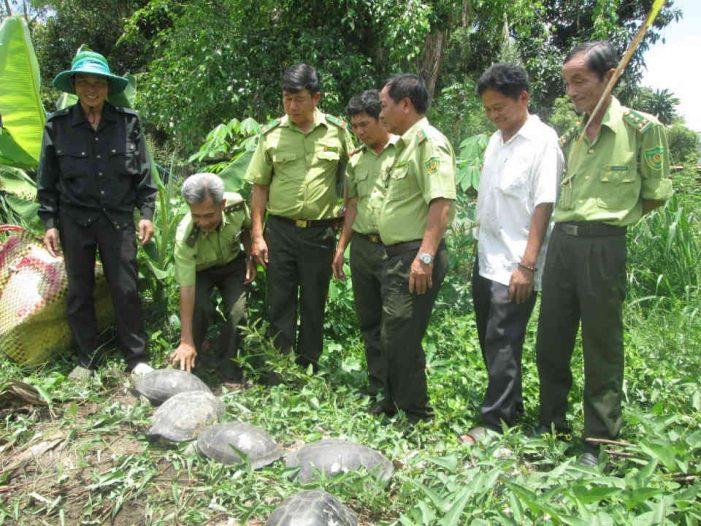 Đấu tranh với vi phạm quy định về bảo vệ động vật hoang dã: Không để nhờn luật