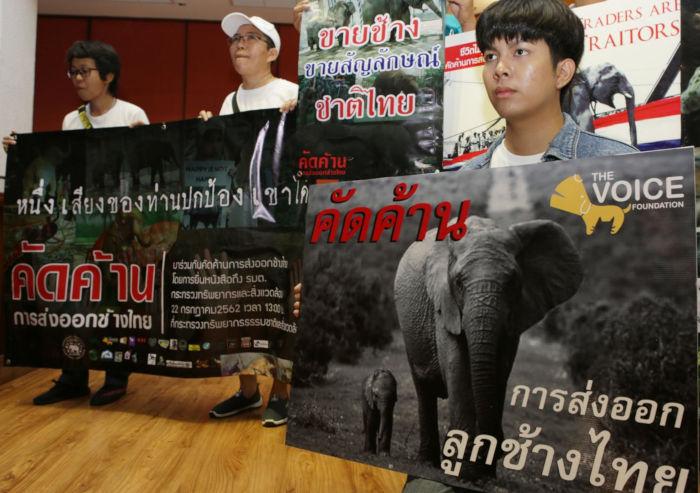 Thái Lan xiết trao đổi voi với nước ngoài