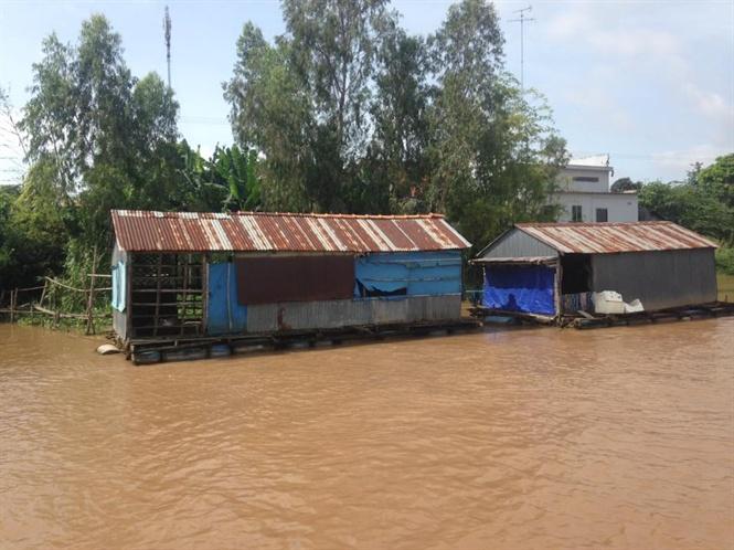 Nước sông Tiền, sông Hậu bị ô nhiễm
