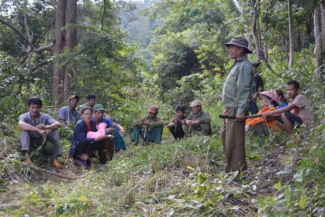 Chi trả tiền dịch vụ môi trường rừng qua tài khoản ngân hàng