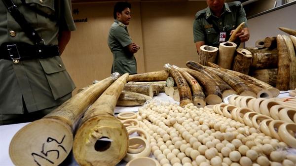 """Du lịch Việt Nam """"nói không"""" với sản phẩm từ động vật hoang dã"""