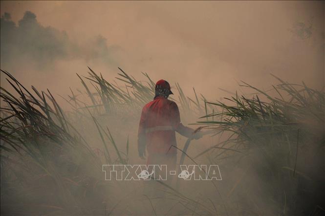 Phát hiện gần 19.000 điểm nóng về cháy rừng tại Đông Nam Á và Papua New Guinea