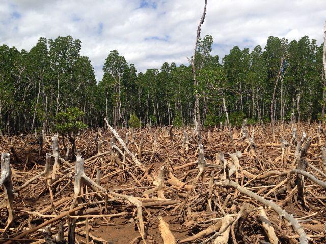 IPCC cảnh báo 7 vấn đề về đất đai và biến đổi khí hậu toàn cầu
