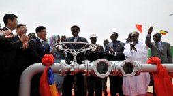 NOAH kiến nghị dừng dự án dầu khí của Trung Quốc tại châu Phi