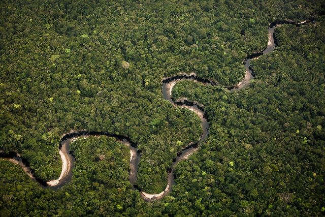 7 mối liên hệ giữa Rừng và Khí hậu trong Báo cáo IPCC