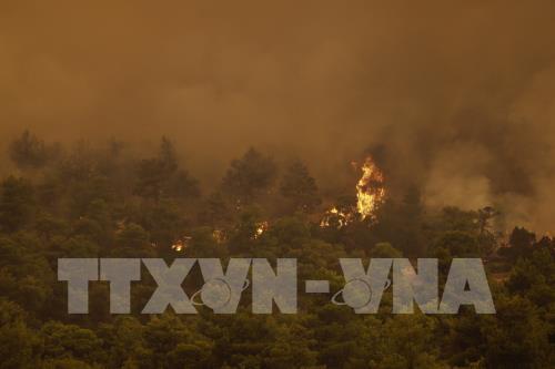 Cháy rừng dữ dội tại Hy Lạp