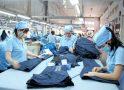 Hướng dẫn biện pháp tự vệ đối với hàng dệt may trong Hiệp định CPTPP