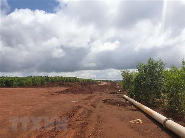 Đắk Nông trồng hơn 30 ha rừng phục hồi môi trường sau khai thác bauxite
