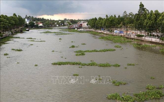 Nghiên cứu giải pháp tổng thể trữ nước tại Đồng bằng sông Cửu Long