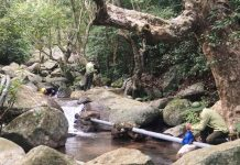 Hạt Kiểm lâm Sơn Trà - Ngũ Hành Sơn nạo vét đập, đảm bảo đủ nước phòng cháy rừng tại bán đảo Sơn Trà. Ảnh: Hạt Kiểm lâm